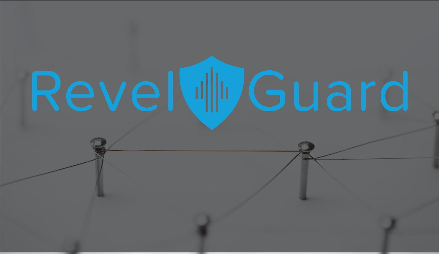 Revel POS 101: Networking Peace of Mind with RevelGuard