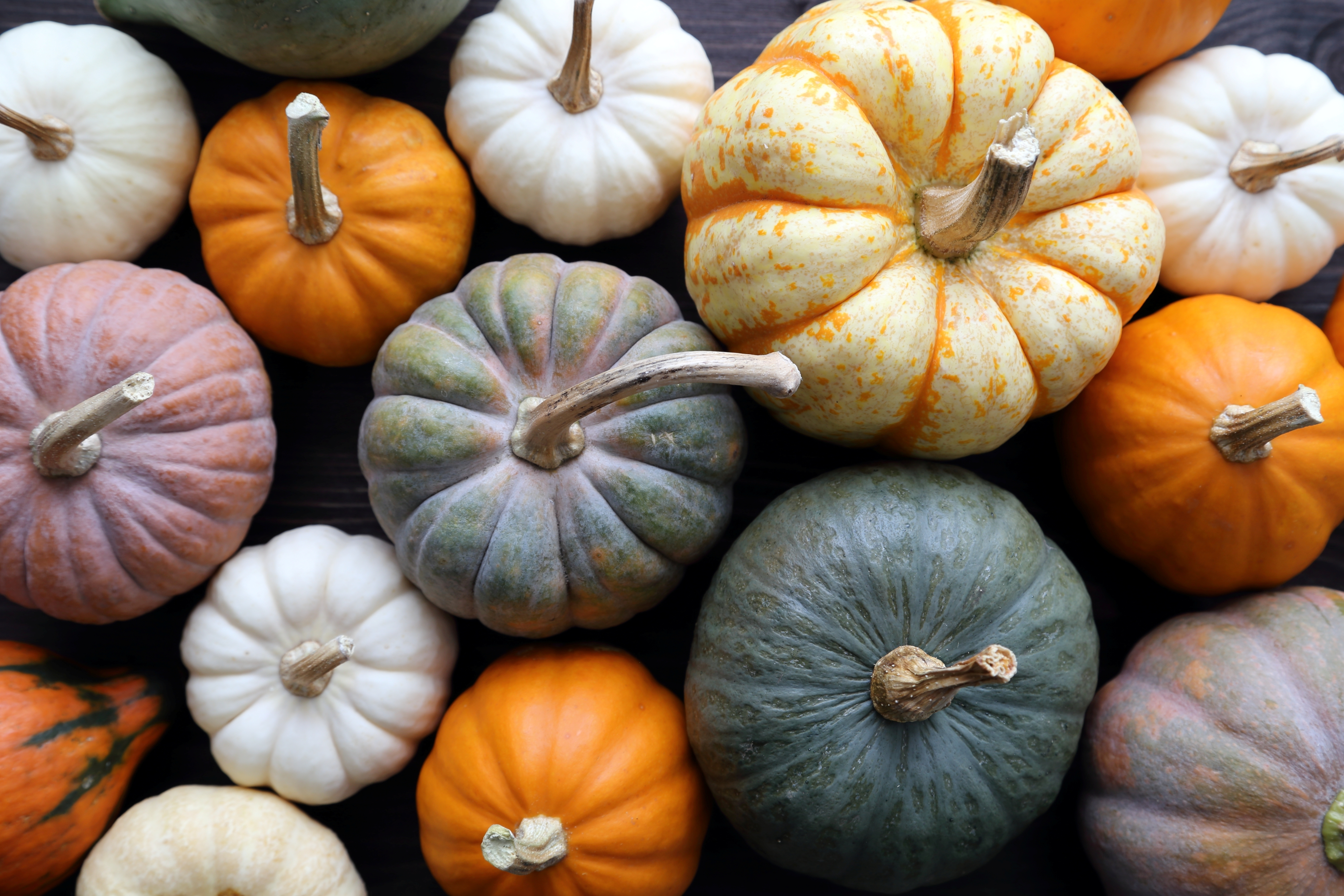 PSL: Pumpkin Sales Lift?